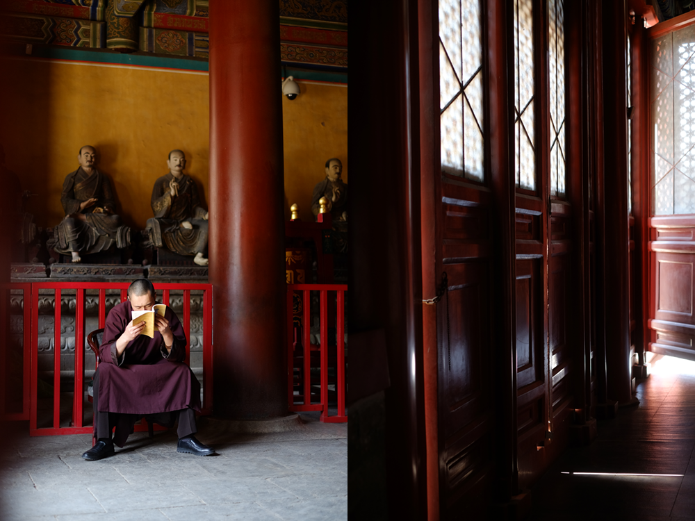 Monk reading in a confucian temple